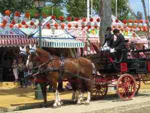 coche caballos 4