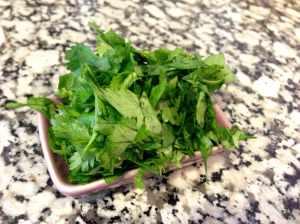 cilantro fresco